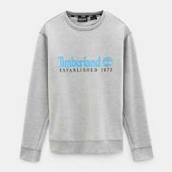 Мъжко горнище Essential Sweatshirt for Men in Grey